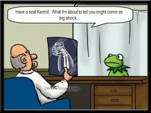 ignorance-is-bliss-kermit